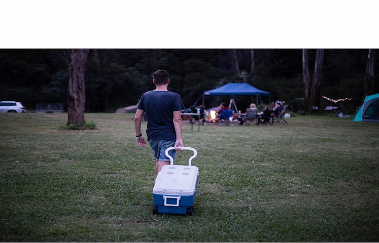 Coleman Large Ice Chest $49.00(reg. $69.99) + Free Shipping!