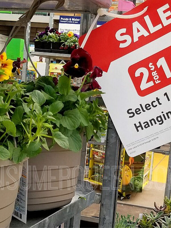 Lowes Fourth of July Sale Hanging Flower Baskets