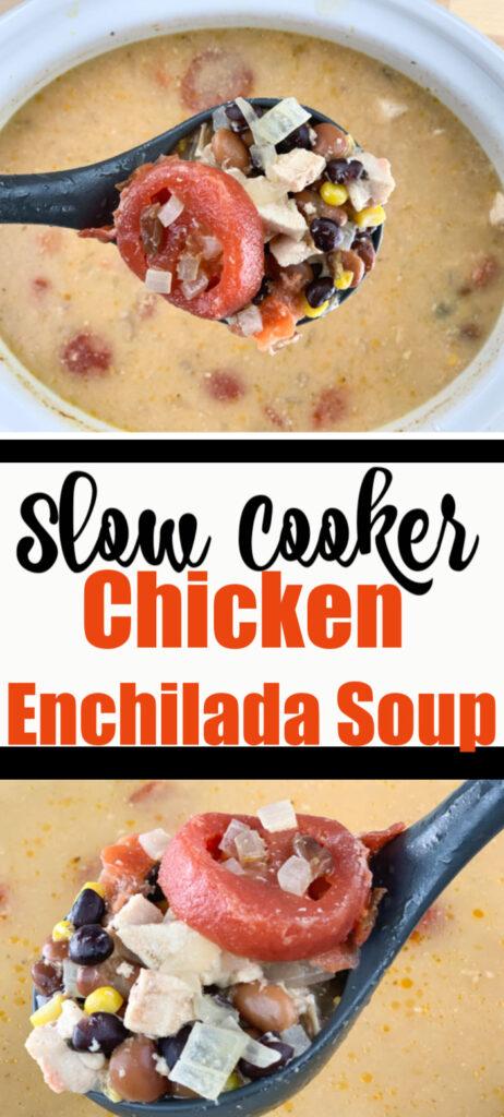 Greg's Slow Cooker Chicken Enchilada Soup