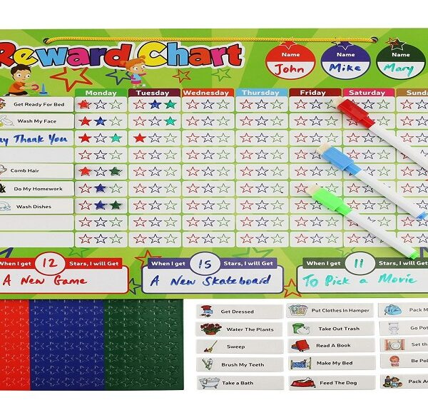 magnetic reward chart set
