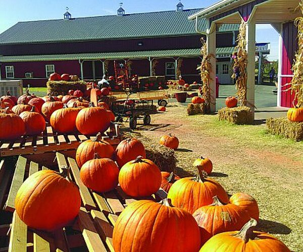free admission to orr family farm for military