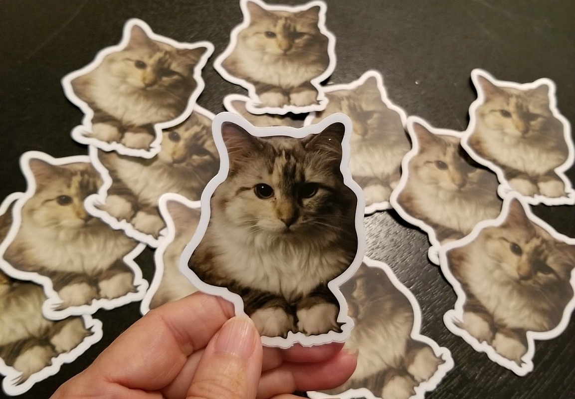 10 Personalized Stickers $1 From Stickermule + FREE Shipping (New Customers)