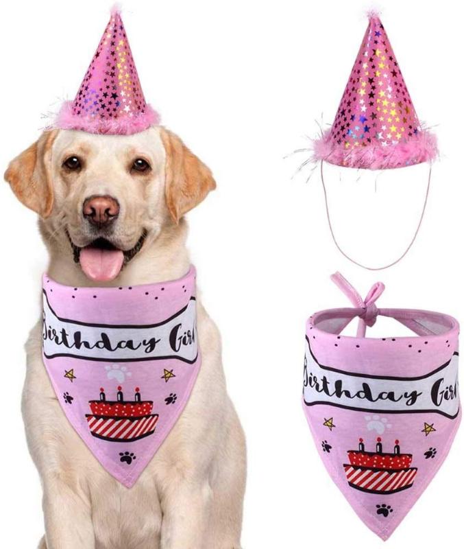 Pet Birthday Set, Blue or Pink with hat & bandana just $4.00 on Amazon!