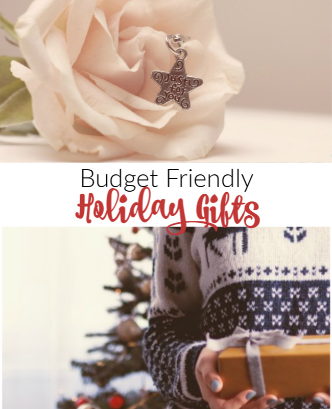 Budget Holiday Gifts