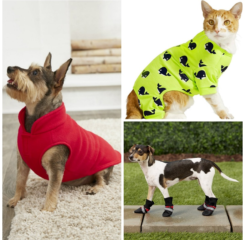Pet Apparel & Accessories Up to 80% Off at Chewy – Starting at ONLY $1.68