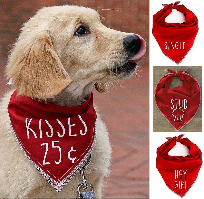 Stitched Valentine Dog Bandanas JUST $13.94 Shipped – 14 Designs *EXPIRED*