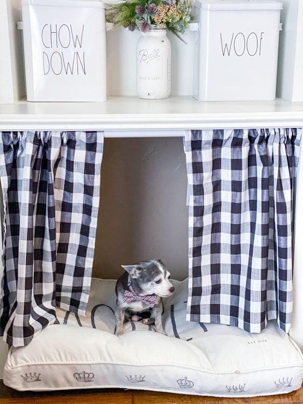 Indoor dog house boomer