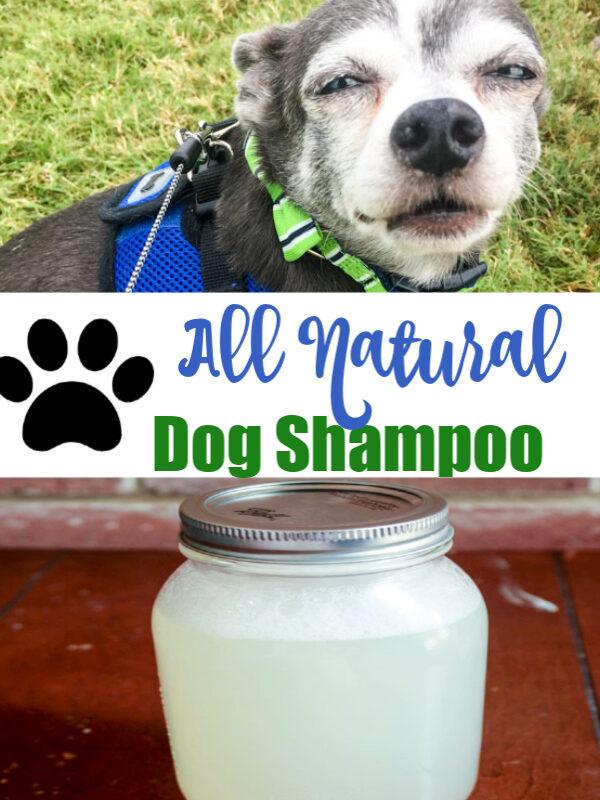 All Natural Dog Shampoo