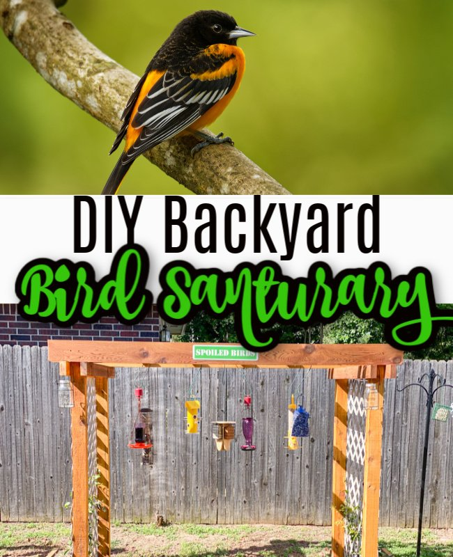 DIY Backyard Sanctuary