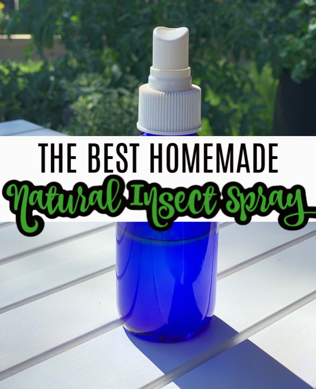 DIY All Natural Bug Be Gone & Insect Spray Recipe