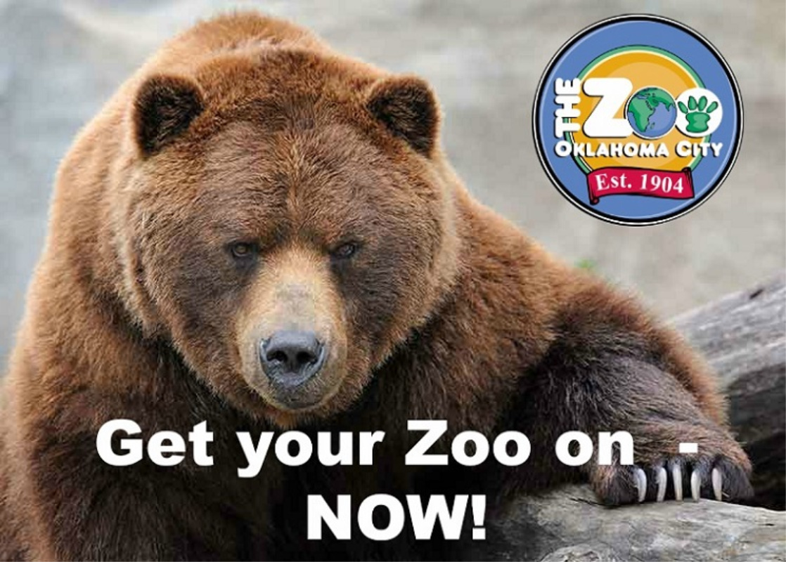 OKC Zoo Back Open With Safari Walk – What You Need to Know!