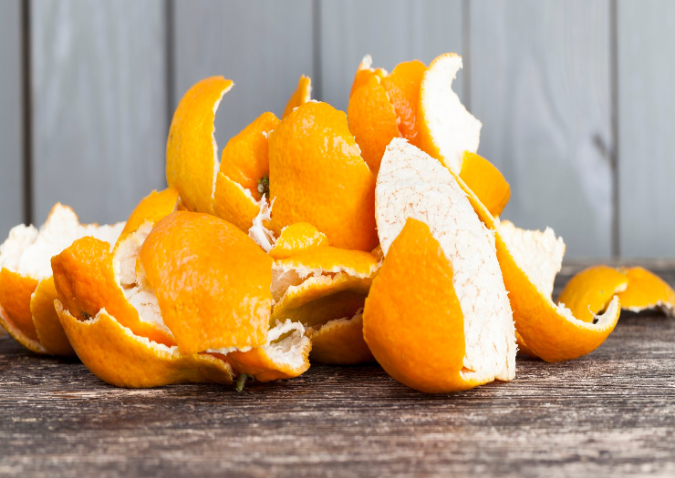 Keep Cats Away with Citrus Peels
