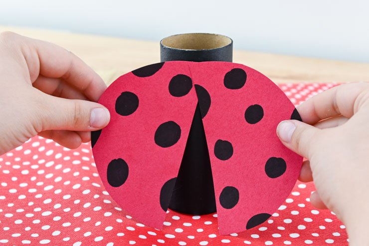 Toilet Paper Roll Lady Bug