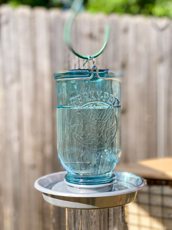 perky pet bird waterer