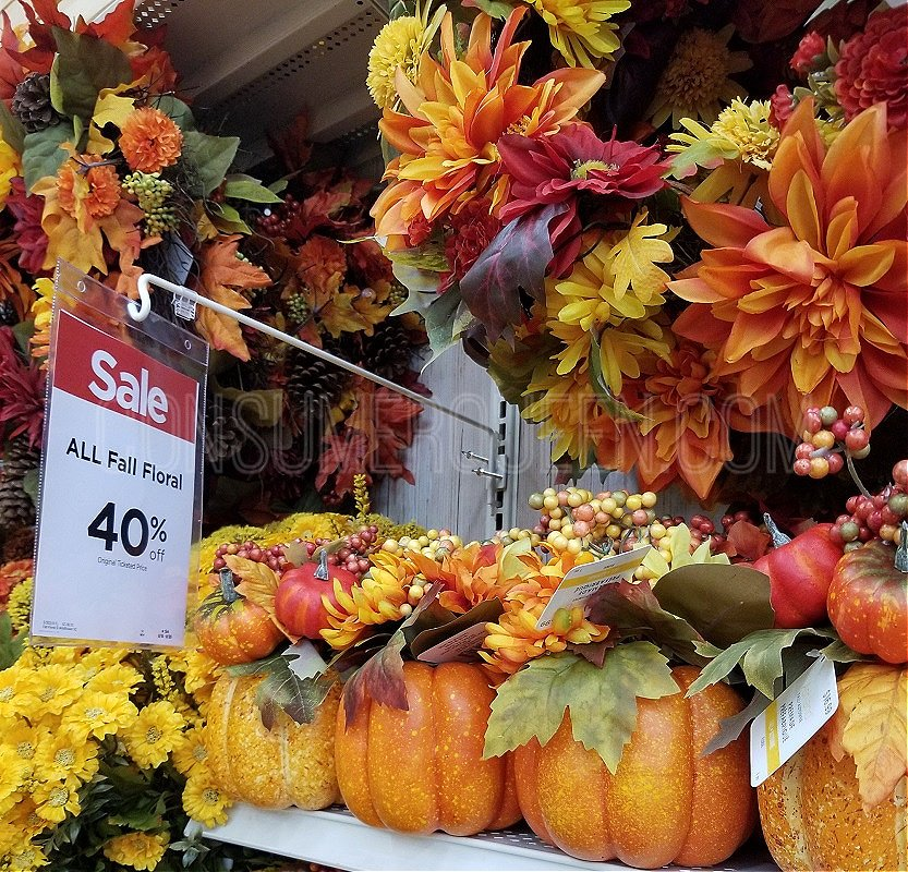 Fall Floral and Pumpkins