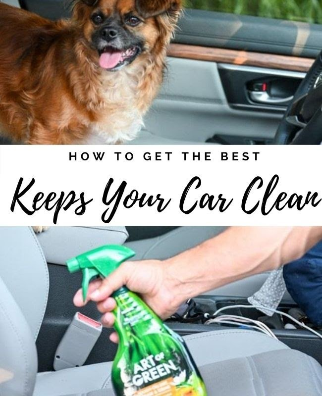 Art of Green Keeps The Car Clean