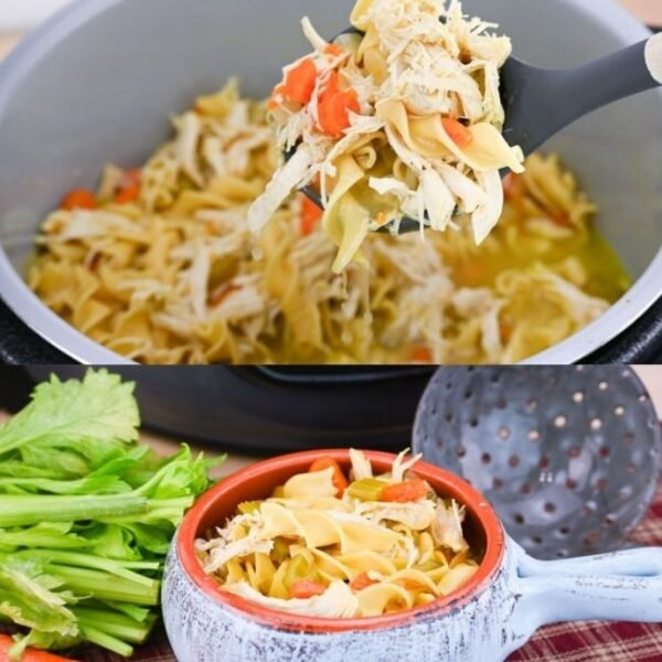 Instant Pot Chicken and Noodle Soup Feature