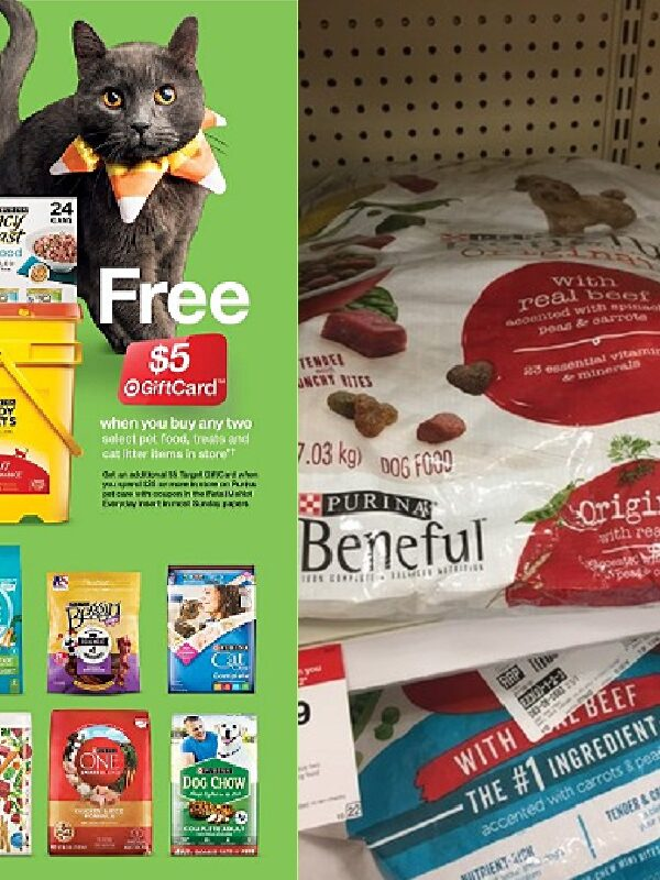 Purina Beneful 14-lb Bag Only $4.50 at Target After Gift Card!