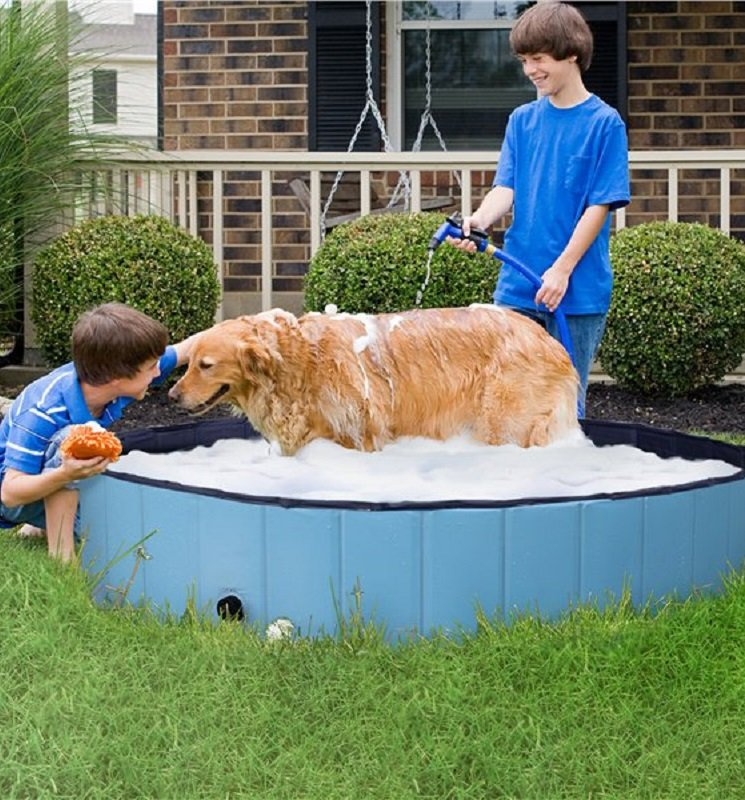 Extra Large Pet Foldable Swimming Pool Only $39 – Ships Free!