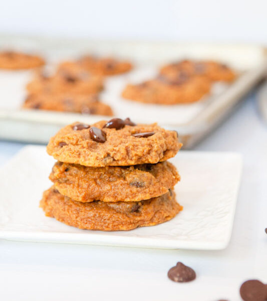 Pumpkin chocolate chip cookies plated feature