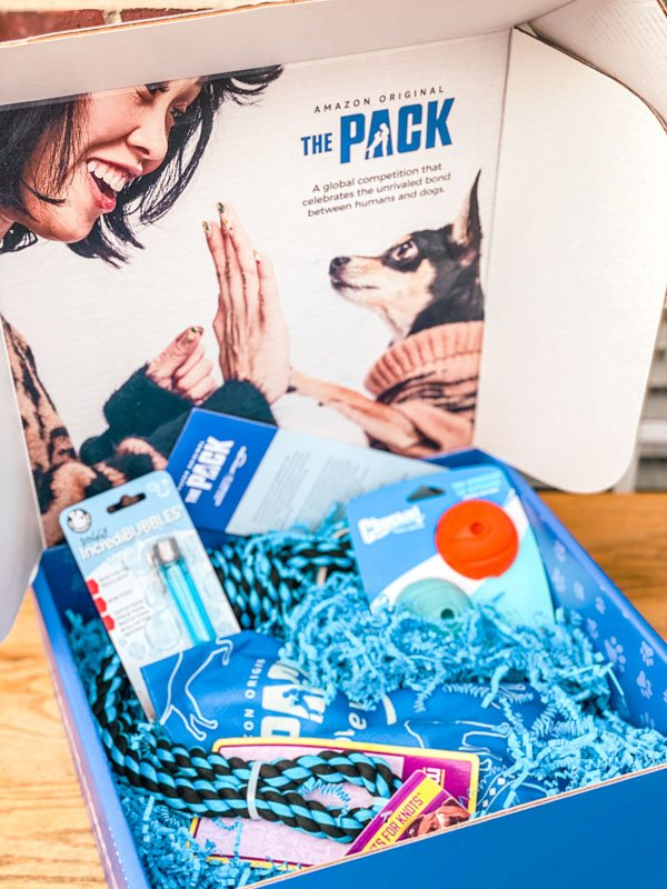 BabbleBox, open and pet toys inside