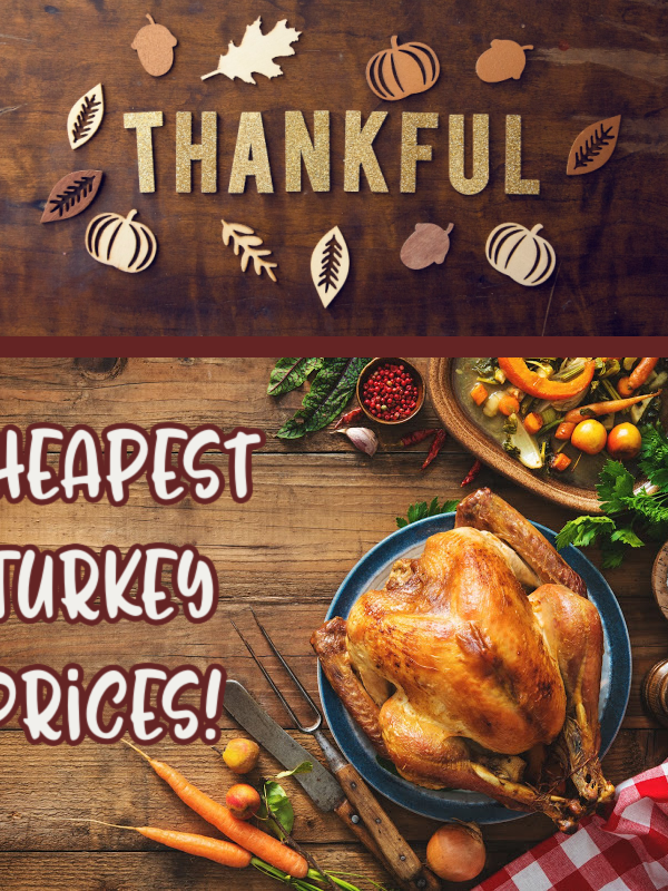 Cheapest Turkey Prices This Week – Check Our List!