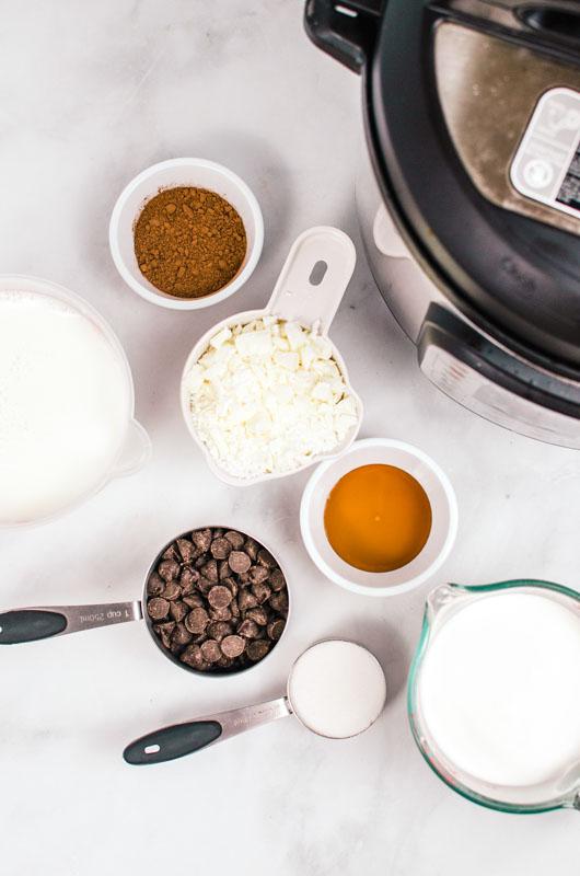 Instant Pot Hot Chocolate Ingredients