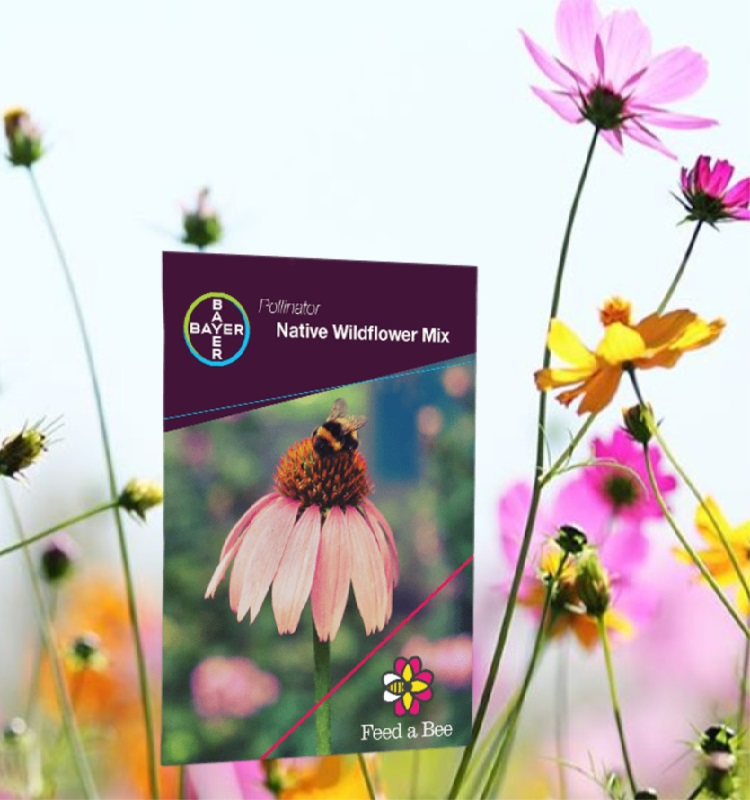 FREE Packet of Flower Seeds From Feed a Bee Initiative & Bayer!