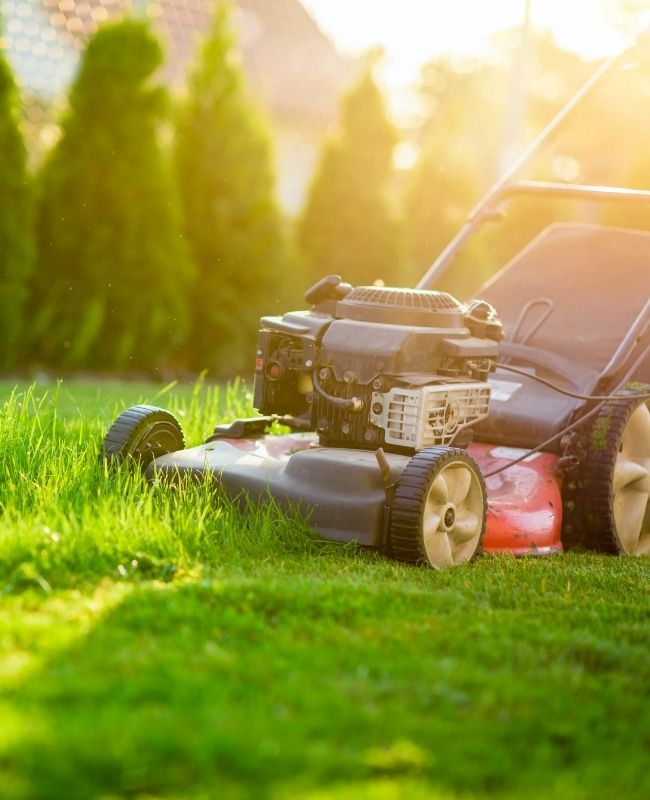 5 Ways to Keep Your Lawn Mower in Check