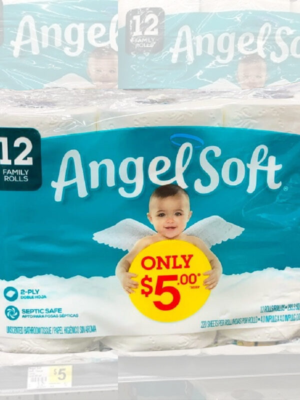 Angel Soft 12 Pack as Low as $3.60