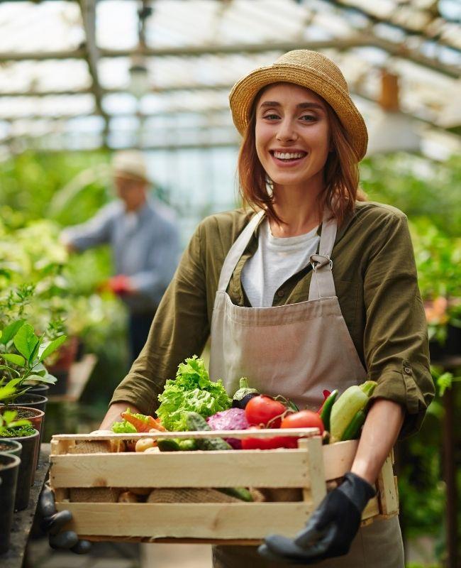 5 Online Vegetable Gardening Planners