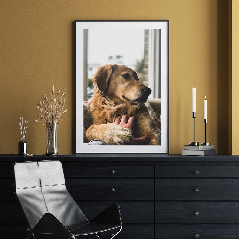 Canvas champ large framed dog photo