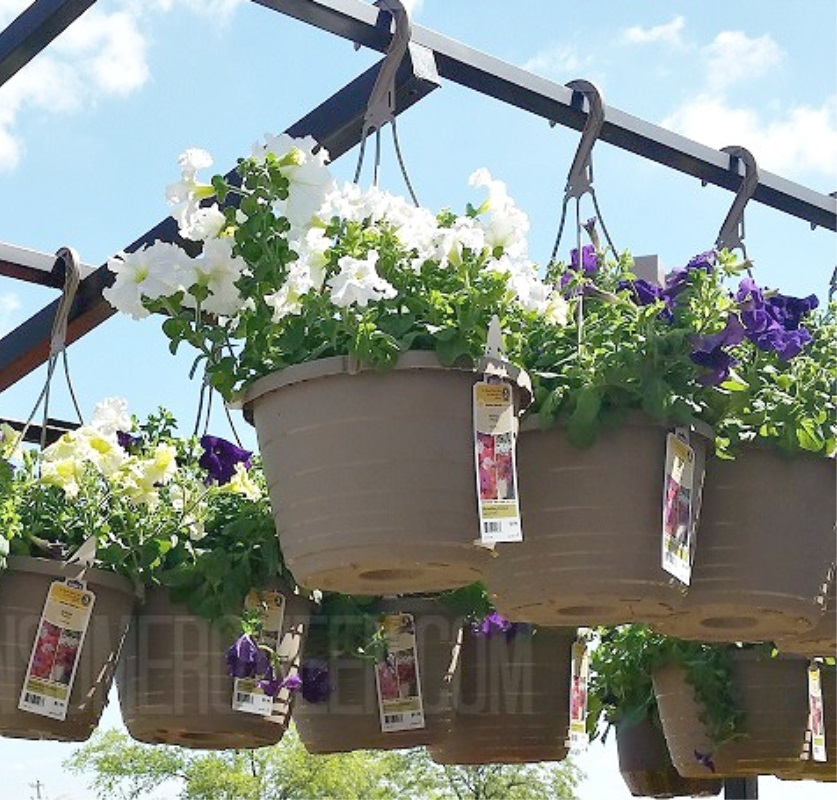Hanging Flower Baskets $7.50 + More at Lowes