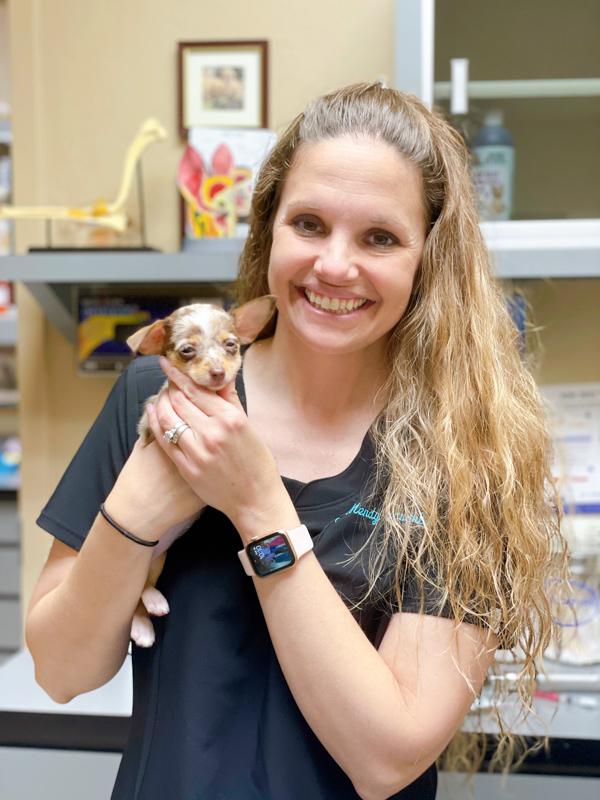 Matilda vet -Checklist for new puppy
