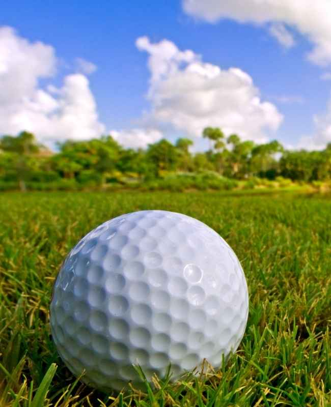 4 Differences Between Pro Golf Turfs and Recreational Golf Turfs