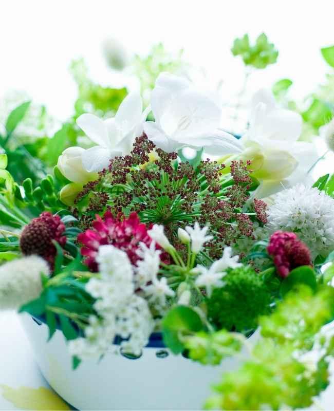 How to Keep Fresh Flowers 2