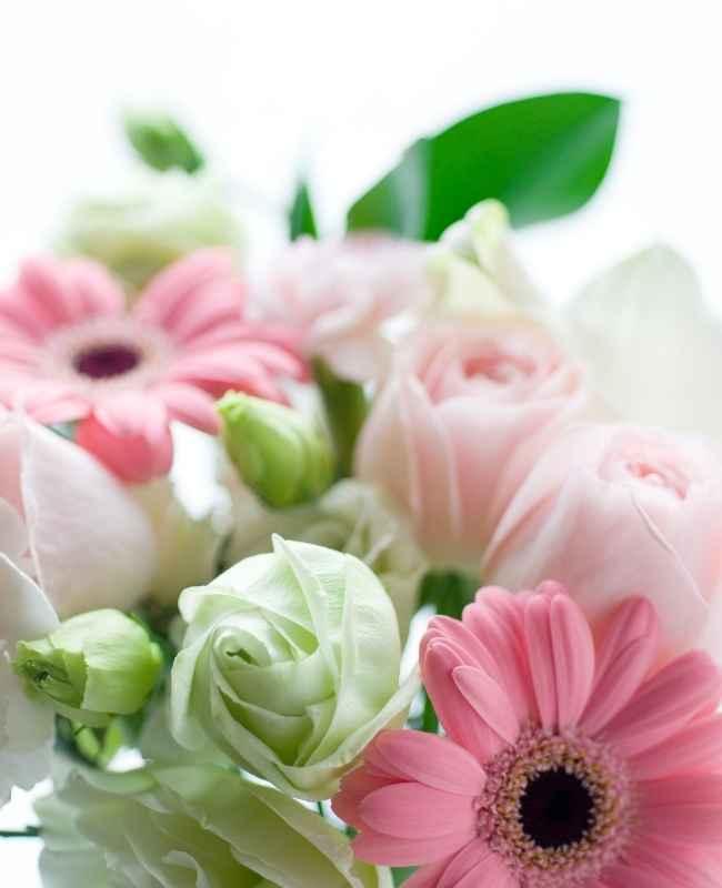 How to Keep Fresh Flowers 3